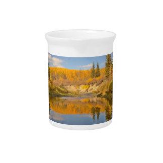Whitemud峡谷の秋 ピッチャー