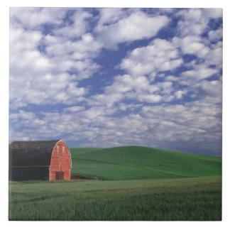 Whitmanのムギ及びオオムギ分野の赤い納屋 タイル