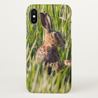 Wild hare having a wash close up iPhone x ケース
