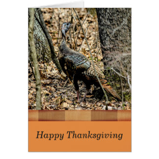 Wildlife Thanksgiving Card,  Turkey in the Forest カード