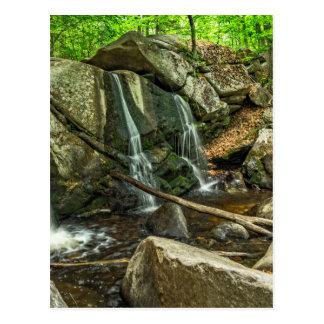 Willardの小川の州立公園のトラップの滝 ポストカード