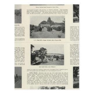 Windsor、カリフォルニア ポストカード