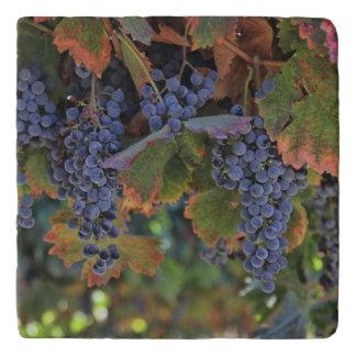 Wine Country Tuscan Decor Vineyard Trivet トリベット