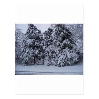winterstorm2010 (オクラホマ) ポストカード