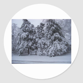 winterstorm2010 (オクラホマ) ラウンドシール