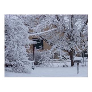 Winterstorm 2010年(オクラホマ) ポストカード