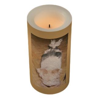 wiredhairのフォックステリア犬が付いているLEDの蝋燭 LEDキャンドル