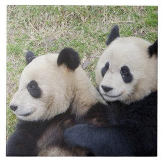 Wolongの予備、中国、ジャイアントパンダの抱き締めること タイル