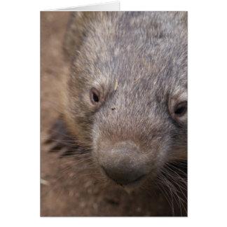Wombatのキス カード