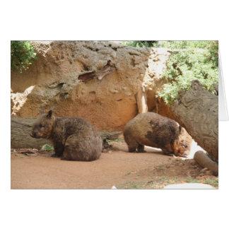 Wombatの天国 カード