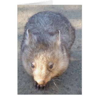Wombatの挨拶状 カード