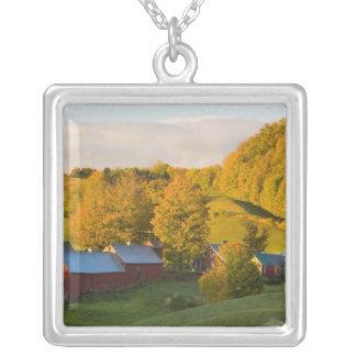 Woodstock、ヴァーモントのJenneの農場。 秋。 2 シルバープレートネックレス
