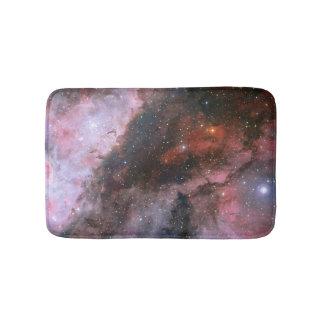WR 22およびカリーナの星雲のEta Carinaeの地域 バスマット