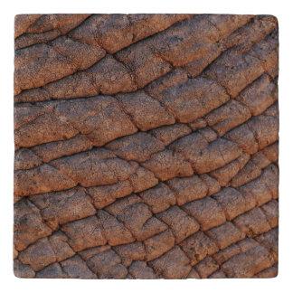Wrinkly象の皮の質のテンプレート トリベット