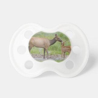 WYのイエローストーン国立公園、オオシカの子牛 おしゃぶり