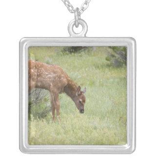 WYのイエローストーン国立公園、オオシカの子牛 シルバープレートネックレス