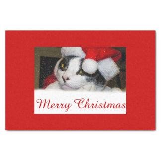 X-Masの帽子のティッシュペーパーのクリスマスの/Holiday猫 薄葉紙