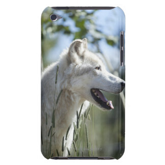 Yellowstone.のオオカミ Case-Mate iPod Touch ケース
