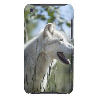 Yellowstone.のオオカミ Case-Mate iPod Touch ケース