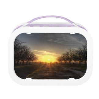 Yubaの国の日没 ランチボックス