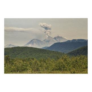 Zhupanovskyの火山の景色の噴火。 ロシア ウッドウォールアート