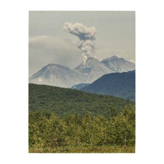 Zhupanovskyの火山の美しい噴火。 ロシア ウッドウォールアート