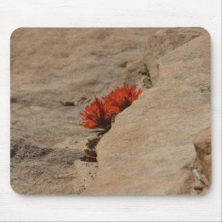 Zionの石のインドペイントブラシ マウスパッド
