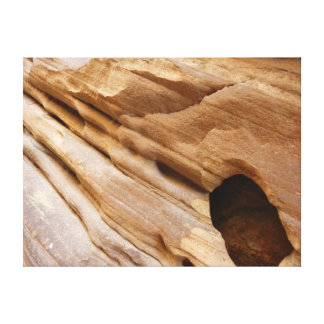 Zion渓谷壁私は自然の写真撮影を抽出します キャンバスプリント