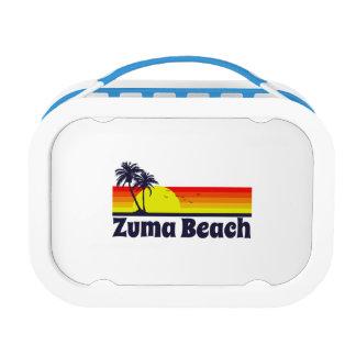 Zumaのビーチ ランチボックス